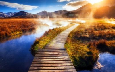 как выбрать свой путь в жизни