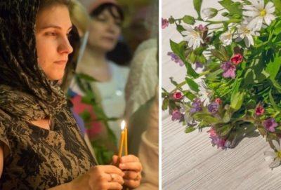 Какие травы можно святить на Троицу