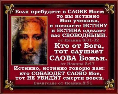 На чем была написана Библия