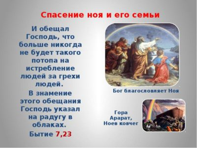 Сколько животных каждого рода взял Ной с собой в ковчег