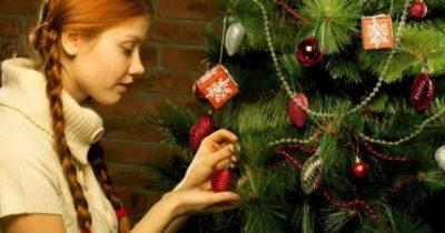 Когда появилась традиция наряжать елку на Новый год